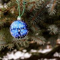 Новогодние шары. :: Анна Окунева