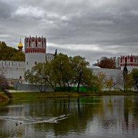 Новодевичий монастырь. :: Oleg S