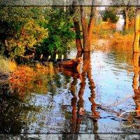 В половодье (Flood time) :: Дмитрий Олегович