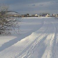 зимняя дорога :: Владимир Коваленко