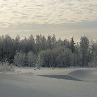 а вот такая у нас зима :: vladimir polovnikov