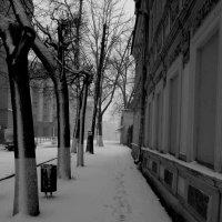 Темные аллеи :: Наталья Сазонова