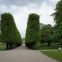 Королевский сад :: Елена Павлова (Смолова)
