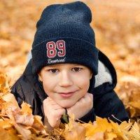 Золотая осень :: Алёна Дедовец