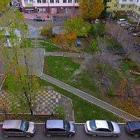 Осень в декабре :: Валерий Дворников