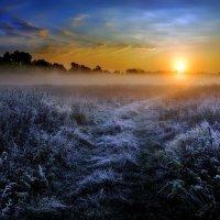Забытый восход....6. :: Андрей Войцехов