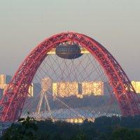 Живописный мост,Москва :: Татьяна Сапрыкина