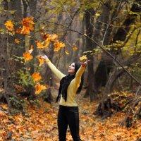 Что такое осень? Это листья... :: Анатолий Шулков