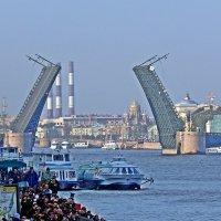 Разведенный Дворцовый мост. :: Виктор Егорович