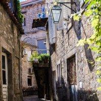 В тени старого города :: Саныч