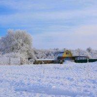 Первый снег :: Петр Заровнев