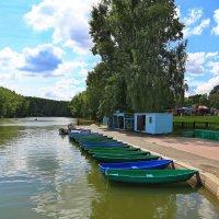 парк Тропарево-Никулино.Москва :: юрий макаров