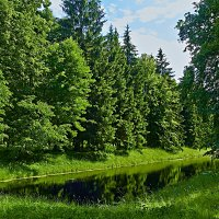 Есть в графском парке черный пруд... :: Ард Прохоров