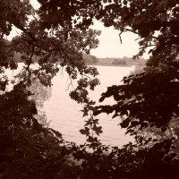 пейзаж :: Дарина Серикова