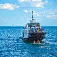 Море :: Svetlana Sneg