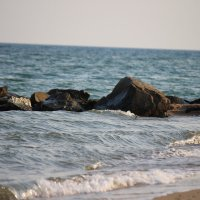 Море :: Svetlana Bohomol