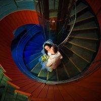 креативные свадебные фотографии :: Михаил Решетников