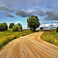 Извилистый путь (2). :: Елена Kазак