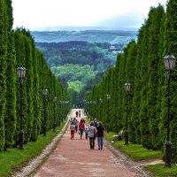 Аллея ,парк Кисловодск! :: Vadim77755 Коркин