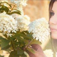 Так пахнет лето... :: Оля Баженова