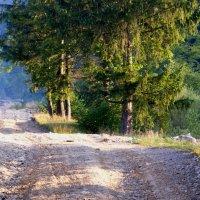 Дорога в гору :: Андрей Земcкий