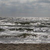 Волны Балтики :: esadesign Егерев