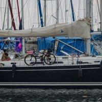 Есть ли жизнь на яхтах? :: susanna vasershtein