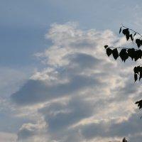 Небо :: Русалина Ожго