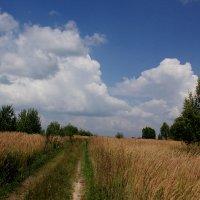 А там за горизонтом - небеса! :: Юрий Морозов