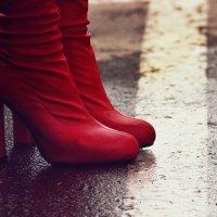 Красная Шапочка :: Даша Мягкая