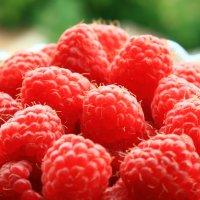 В саду ягода малинка! :: Ирина Артемьева