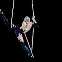Тайны цирка :: Михаил Кузнецов