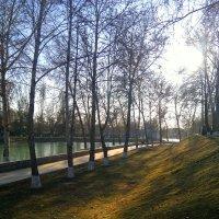Осень... :: Анна Ишкаева