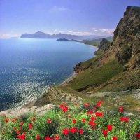праздник Весны :: viton