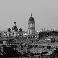Крыши любимого города. :: Анастасия Соболева