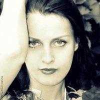 портрет девушки :: Pasha Zhidkov