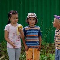 На фоне зеленого забора... :: Наталия Коваленко