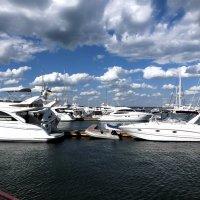 Яхты :: Татьяна Латкина