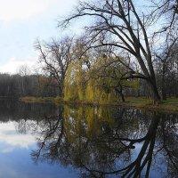 Ноябрьский пейзаж :: Маргарита Батырева