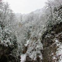 Величие зимы :: Вячеслав Случившийся