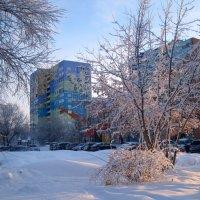 В зимнем сиянии :: Елена Семигина