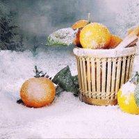 Заметает зима, заметает... :: SaGa