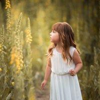 Закат в цветах :: Валерия Мороз