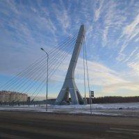 вантовый мост через Дудергофский канал :: Елена