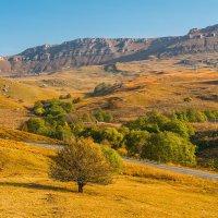 Осень в КЧР... :: Аnatoly Gaponenko