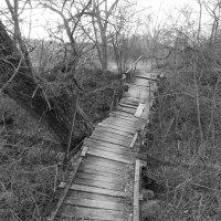 мост :: Ирина Красникова-Дашкова