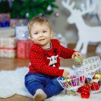Новогодние забавы :: Ирина Kачевская