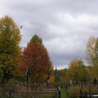 Деревенское кладбище :: Анна Воробьева