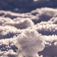 снег 2 :: Alexandr Staroverov