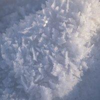 снег... :: Alexandr Staroverov